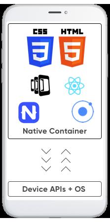 Hybrid Application Development by NovaTechZone Software Company